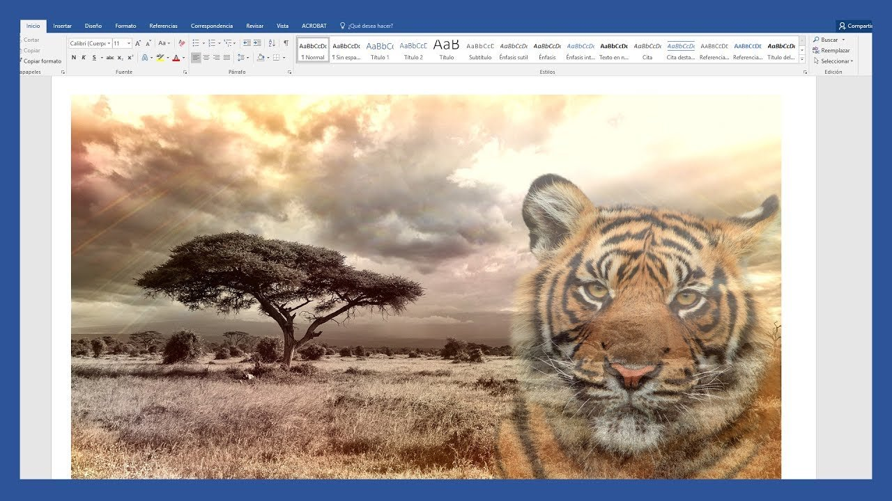 Word – Hacer imagen transparente en Word y cómo guardarla