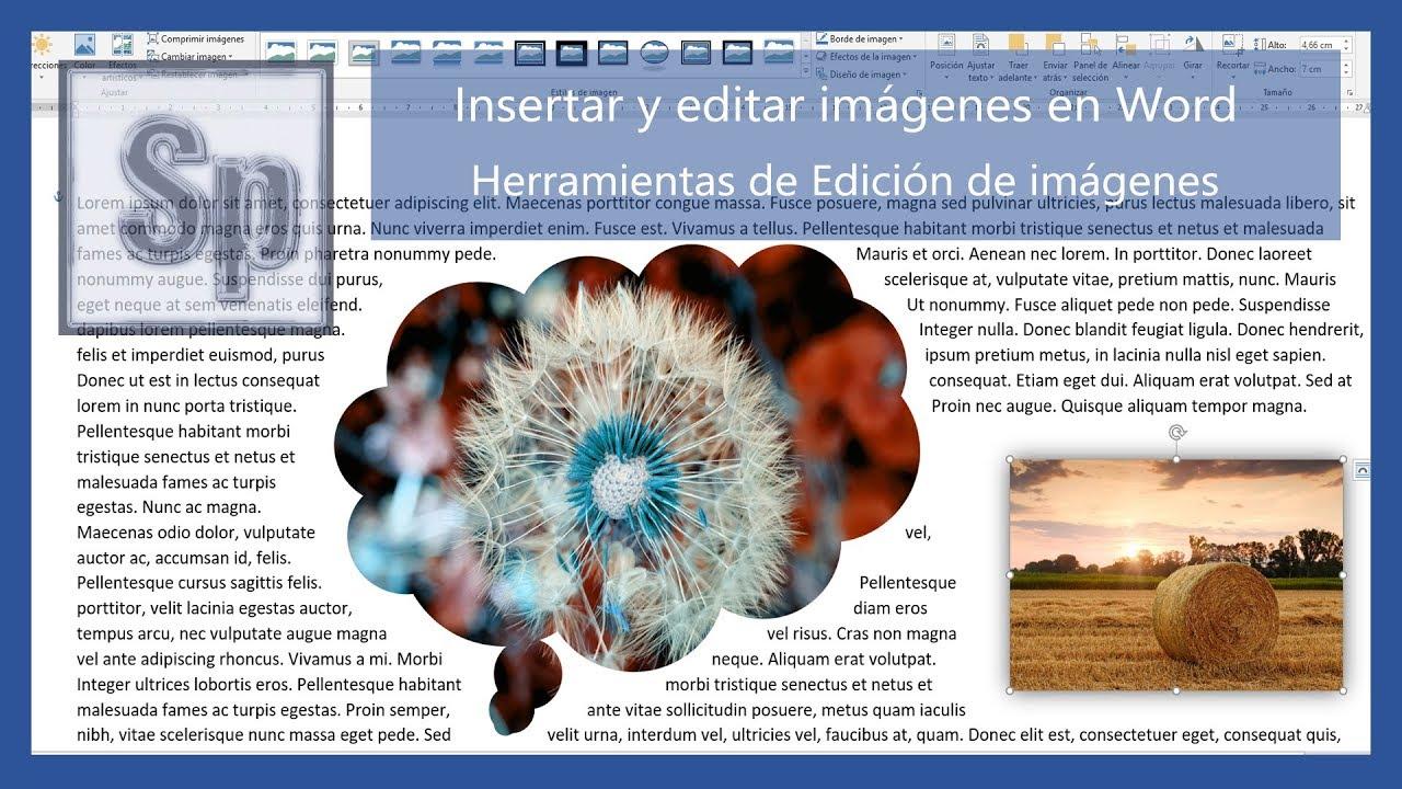 Insertar y editar imágenes en Word